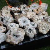 _Field and stream geodes for sale at a recent Bloomington rock show (Author: Bob Harman)