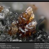 VesuvianiteFelskinn, Glaciar Fee, Saas Fee, Valle Saas, Zermatt - Saas Fee, Wallis (Valais), Suizafov 2.5 mm (Author: ploum)