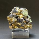 Galena and Chalcopyrite<br />Madan mining area, Rhodope Mountains, Smolyan Oblast, Bulgaria<br />65mm X 55mm x 30mm<br /> (Author: Philippe Durand)
