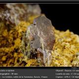 Axinite-(Fe) with Epidote<br />La Léchère (Notre Dame de Briançon), Tarentaise Valley, Moûtiers, Albertville, Savoie, Auvergne-Rhône-Alpes, France<br />fov 30 mm<br /> (Author: ploum)