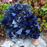 fluorite<br />Rogerley Mine, Frosterley, Weardale, North Pennines Orefield, County Durham, United Kingdom England<br />12 cm across<br /> (Author: Jesse Fisher)