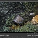 Anatase<br />Col de la Madeleine, La Lauzière Massif, Saint-Jean-de-Maurienne, Savoie, Auvergne-Rhône-Alpes, France<br />fov 3.0 mm<br /> (Author: ploum)