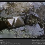 Anatase<br />Grand Pic de la Lauzière, La Lauzière Massif, Saint-Jean-de-Maurienne, Savoie, Auvergne-Rhône-Alpes, France<br />fov 7 mm<br /> (Author: ploum)