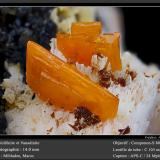 Wulfenite and VanadiniteMibladen (Distrito minero Mibladen), Midelt, Provincia Midelt, Region Meknès-Tafilalet, Marruecosfov 14 mm (Author: ploum)
