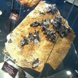 Bournonite<br />Georg Mine, Willroth, Flammersfeld, Altenkirchen (Westerwald), Siegerland, Rhineland-Palatinate/Rheinland-Pfalz, Germany<br />Specimen size 18 cm<br /> (Author: Tobi)