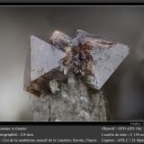 Anatase and Titanite<br />Col de la Madeleine, La Lauzière Massif, Saint-Jean-de-Maurienne, Savoie, Auvergne-Rhône-Alpes, France<br />fov 2.8 mm<br /> (Author: ploum)