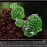 Adamite<br />Potosí Mine, Santo Domingo (Francisco Portillo), Santa Eulalia District, Municipio Aquiles Serdán, Chihuahua, Mexico<br />fov 2.8 mm<br /> (Author: ploum)
