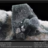 Anatase on Bertrandite<br />Col de la Madeleine, La Lauzière Massif, Saint-Jean-de-Maurienne, Savoie, Auvergne-Rhône-Alpes, France<br />fov 5.5 mm<br /> (Author: ploum)