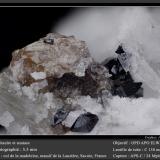 Titanite and AnataseCol de la Madeleine, Macizo La Lauzière, Saint-Jean-de-Maurienne, Saboya, Auvergne-Rhône-Alpes, Franciafov 5.5 mm (Author: ploum)