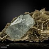 Beryl and Muscovite<br />Pingwu Mine, Huya township, Mount Xuebaoding, Pingwu, Mianyang Prefecture, Sichuan Province, China<br />108 X 54 mm<br /> (Author: Manuel Mesa)
