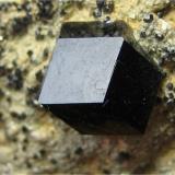 Andradita (variedad melanito)<br />San Benito County, California, USA<br />6 cm<br /> (Autor: marco campos-venuti)