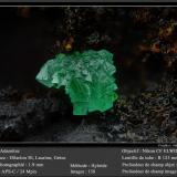 Adamite<br />Hilarion Mine, Hilarion area, Kamariza Mines, Agios Konstantinos, Lavrion Mining District, Attikí (Attica) Prefecture, Greece<br />fov 1.9 mm<br /> (Author: ploum)