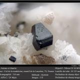 Anatase and Titanite<br />Col de la Madeleine, La Lauzière Massif, Saint-Jean-de-Maurienne, Savoie, Auvergne-Rhône-Alpes, France<br />fov 3.8 mm<br /> (Author: ploum)