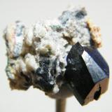 Azurite<br />Tsumeb Mine, Tsumeb, Otjikoto Region, Namibia<br />29mm x 23mm<br /> (Author: Heimo Hellwig)