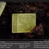 Autunite<br />Menzenschwand, Sankt Blasien, Waldshut, Freiburg, Baden-Württemberg, Germany<br />fov 1.8 mm<br /> (Author: ploum)