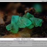 Adamite (variety cuprian adamite)<br />Hilarion Mine, Hilarion area, Kamariza Mines, Agios Konstantinos, Lavrion Mining District, Attikí (Attica) Prefecture, Greece<br />fov 6.0 mm<br /> (Author: ploum)