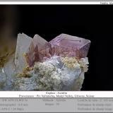 Axinite (Group)<br />Piz Vallatscha, Lukmanier Pass, Grischun (Grisons; Graubünden), Switzerland<br />fov 6.0 mm<br /> (Author: ploum)