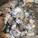 Anthraxolite with centimeter+ size quartz. (Author: vic rzonca)