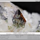 Anatase and Clinochlore on Quartz<br />L'Homme de Beurre, La Lauzière Massif, Saint-Jean-de-Maurienne, Savoie, Auvergne-Rhône-Alpes, France<br />fov 5 mm<br /> (Author: ploum)