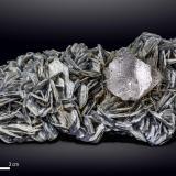 Fluorite on Muscovite<br />Nagar, Hunza Valley, Nagar District, Gilgit-Baltistan (Northern Areas), Pakistan<br />130 x 71 mm<br /> (Author: Manuel Mesa)