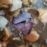 Fluorita<br />Pedrera Mas Sever, Massabè (Mas Ceber), Sils, Comarca La Selva, Girona/Gerona, Catalunya, España<br />5 mm. aprox. el cristal<br /> (Autor: Iwok)