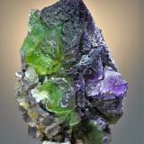 Fluorite<br />Cookes Peak District, Luna County, New Mexico, USA<br />8.9 x 6.8<br /> (Author: Philip Simmons)