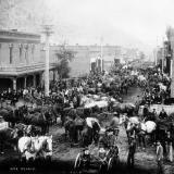 Ore teams and more in Idaho Springs, Colorado, 1894. (Author: vic rzonca)