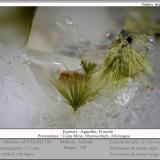 Agardite (Series) on Fluorite<br />Clara Mine, Rankach Valley, Oberwolfach, Wolfach, Black Forest, Baden-Württemberg, Germany<br />fov 3.5 mm<br /> (Author: ploum)