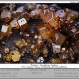 Vanadinite and GoethiteTaouz, Erfoud, Provincia Er Rachidia, Region Meknès-Tafilalet, Marruecosfov 7 mm (Author: ploum)