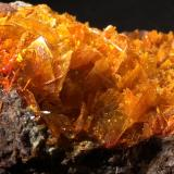 Wulfenite, MimetiteMina Rowley, Theba, Distrito Painted Rock, Montes Painted Rock, Condado Maricopa, Arizona, USA245 mm x 155 mm x 95 mm (Author: Robert Seitz)