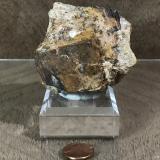 Goethite after Pyrite<br />Fat Jack Mine, Lane Mountain, Crown King, Pine Grove District, Bradshaw Mountains, Yavapai County, Arizona, USA<br />7cm<br /> (Author: TripleRoyale)