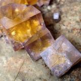 Fluorite, Chalcopyrite<br />Malwine Mine, Bergmännisch Glück Flacher vein, Wismut shaft 29b, Frohnau, Annaberg-Buchholz, Annaberg District, Erzgebirgskreis, Saxony/Sachsen, Germany<br />FOV 3 cm<br /> (Author: Tobi)