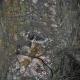 Notice the small 'pods' of dark Wolframite just above the scheelite occurrence (Author: markbeckett)