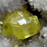 Sulfur<br />Sulfur Mines, La Serrata, Lorca, Comarca Alto Guadalentín, Murcia, Region of Murcia, Spain<br />FOV 7mm<br /> (Author: Carlos Pareja)
