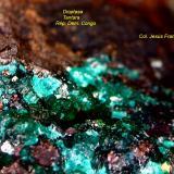 Dioptasa.<br />Zona Mina Tantara, Shinkolobwe, Cinturón de cobre de Katanga, Katanga (Shaba), Congo RD (Zaire)<br />2´784 x 2´288 mm.<br /> (Autor: Jesus Franquesa Baucells)