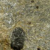 Esquisto con cloritoide y granatesLaujar de Andarax, Comarca Alpujarra Almeriense, Almería, Andalucía, España11 x 12 x 3 cm. (Autor: Felipe Abolafia)