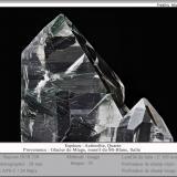 Actinolite in Quartz<br />Miage Glacier, Veny Valley, Monte Bianco Massif (Mont Blanc Massif), Courmayeur, Aosta Valley (Val d'Aosta), Italy<br />fov 30 mm<br /> (Author: ploum)