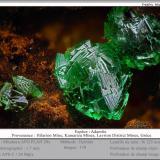 Adamite<br />Hilarion Mine, Hilarion area, Kamariza Mines, Agios Konstantinos, Lavrion Mining District, Attikí (Attica) Prefecture, Greece<br />fov 1.7 mm<br /> (Author: ploum)