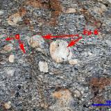 Gneis porfiroblasticoPraia Xilloi, O Vicedo, Comarca da Mariña Occidental, Lugo, Galicia, EspañaEscala gráfica (Autor: Jesús López)