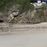 """El afloramiento de gneis """"ollo de sapo"""" se encuentra en la margen derecha de la playa. (Autor: Jesús López)"""