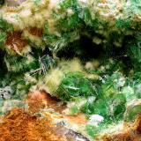 Torbernita y Uranophana-Beta (Uranofana-Beta)<br />Mina Trapero, Cardeña, Comarca Los Pedroches, Córdoba, Andalucía, España<br />Campo de visión de 5 mm.<br /> (Autor: Antonio Carmona)