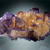 Fluorite with Chalcopyrite<br />Denton Mine, Goose Creek Mine group, Harris Creek Sub-District, Hardin County, Illinois, USA<br />15x6x5 cm overall size<br /> (Author: Jesse Fisher)