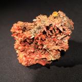 Crocoite<br />Adelaide Mine, Dundas mineral field, Zeehan District, West Coast Council, Tasmania, Australia<br />80 mm x 58 mm x 53 mm<br /> (Author: Robert Seitz)