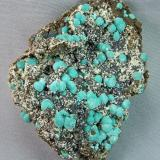 Rosasite<br />Silver Bill Mine, Costello Mine group, Gleeson, Turquoise District, Dragoon Mountains, Cochise County, Arizona, USA<br />7.0cm x 5.5cm<br /> (Author: rweaver)