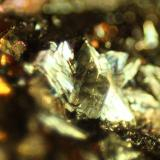 Pyrite<br />Valdelapiedra ravine, Foz-Calanda, Comarca Bajo Aragón, Teruel, Aragon, Spain<br />FOV 5 mm<br /> (Author: franjungle)