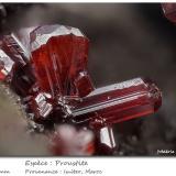 Proustite<br />Imiter Mine, Jebel Saghro, Imiter District, Tinghir Province, Drâa-Tafilalet Region, Morocco<br />fov 4.0 mm<br /> (Author: ploum)