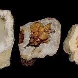 Calcite<br />Indiana, USA<br />Calcites from 5 cm to 9 cm<br /> (Author: Bob Harman)