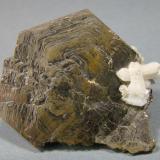 Pirrotita<br />Dalnegorsk, Distrito minero Kavalerovo, Primorskiy Kray, Extremo Oriente ruso, Rusia<br />4 cm<br /> (Autor: nimfiara)