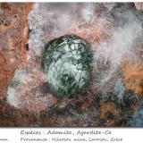 Adamite and Agardite-Ce<br />Hilarion Mine, Hilarion area, Kamariza Mines, Agios Konstantinos, Lavrion Mining District, Attikí (Attica) Prefecture, Greece<br />fov 2.0 mm<br /> (Author: ploum)