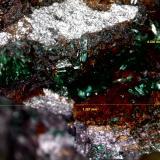 Brochantita<br />Mina La Estrella, Barranco del Jaroso, Sierra Almagrera, Cuevas del Almanzora, Comarca Levante Almeriense, Almería, Andalucía, España<br />1´287 x 0´530 mm.<br /> (Autor: Jesus Franquesa Baucells)